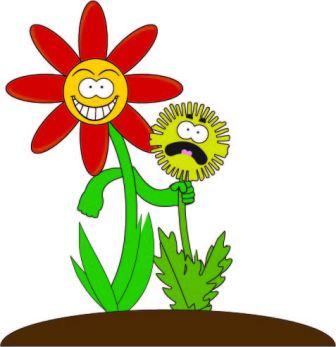 FlowerCHokingWeed